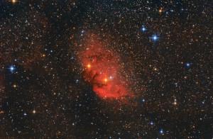 "Nebulosa SH2-101-""tulipano"""