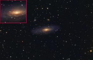 NGC-7331